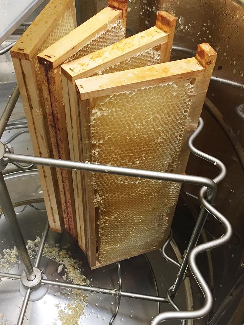 extraction du miel - extracteur